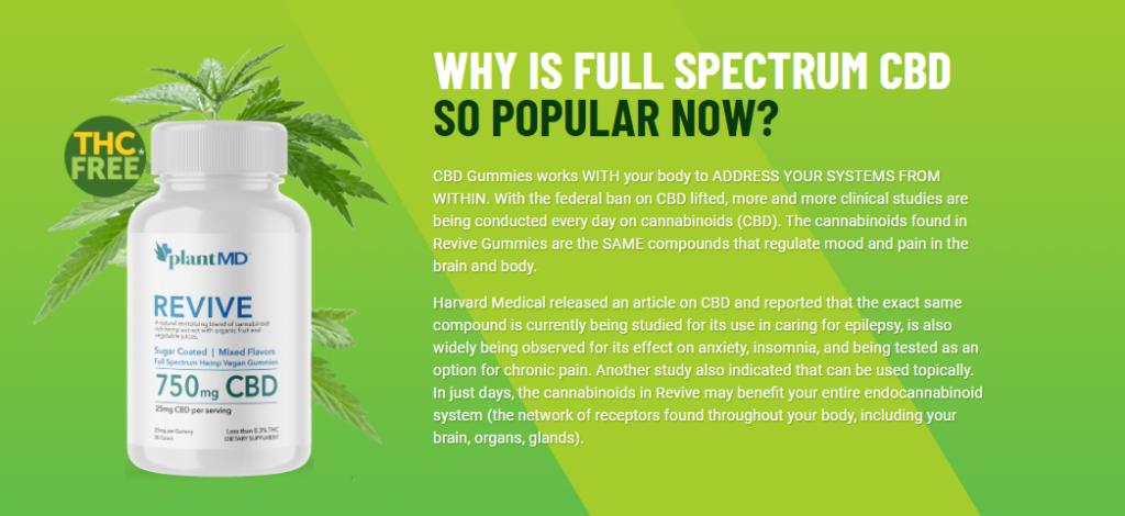 Plant MD CBD Gummies 1